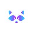 racoon Design