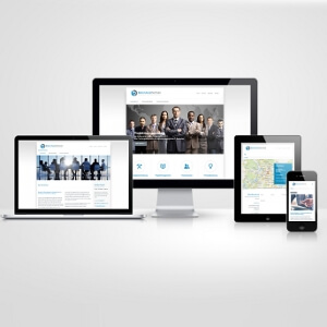 Homepage for management consultancy